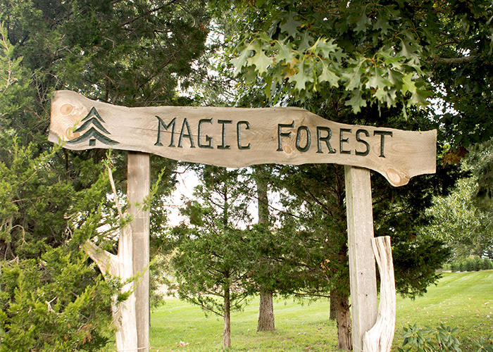 The magic forest rustic wedding venue